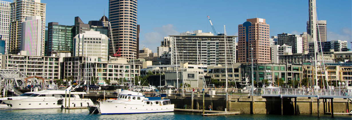 Robert Half Auckland
